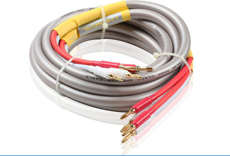 Choseal QB203 OD13mm 2.5m Audiophile HiFi OFC Audio Cable Dual Banana Head Speaker Cable